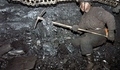 The unfortunate social costs of Coalgate and such scams